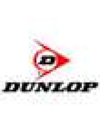 Мотошины Dunlop