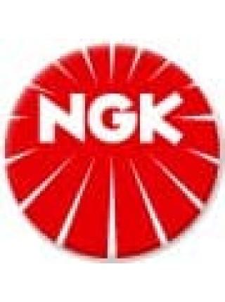 Свеча зажигания NGK DPR8EA-9